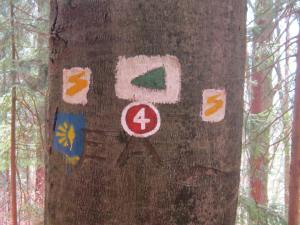 Path signs in the Bavarian forest