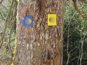 Camino Santiago signs Bavaria