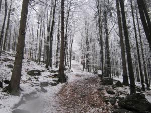 Snow-mointain-path-in-Bavaria