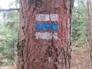 Czech Republic blue walking sign