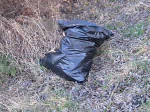 Sumava National Park rubbish