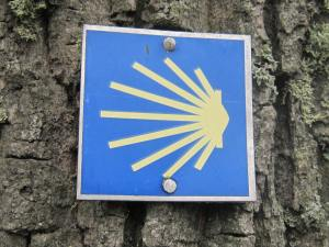 German scallop shell Camino signs