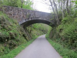 Camino-bridge