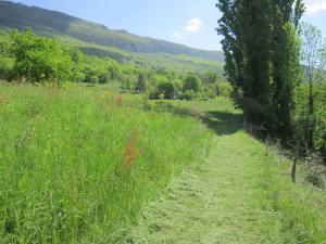 Camino-France-1