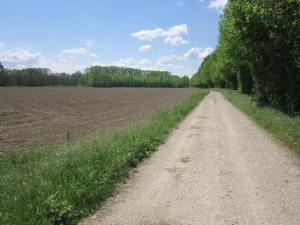 Camino-France-2