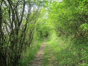 Frangy-route