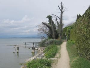 Genfersee Camino