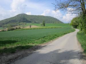 Way-of-Geneva-landscape