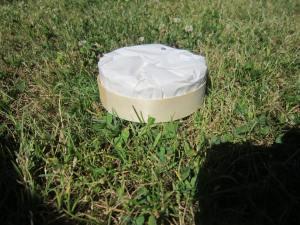 Camembert-Heaven