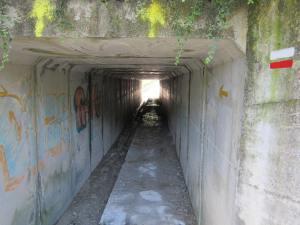 Camino-Tunnel