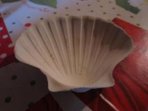 Scallop shell ashtray