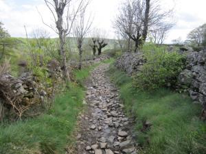 Walk from Saint-Chély-d'Aubrac