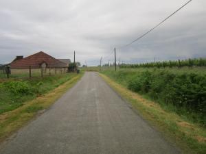 Rainy Camino