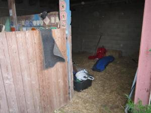 Sleeping-in-the-hay