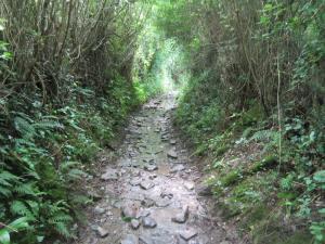Walk-into-Ostabat