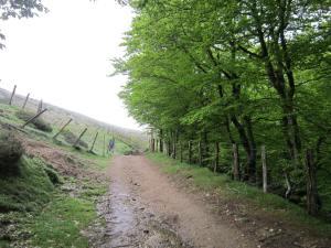 Walking-to-Spain-from-Saint-Jean-Pied-de-Port