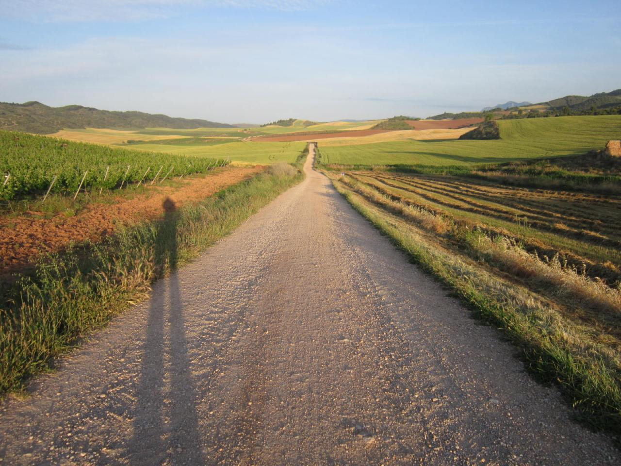 Sunrise on the Camino Frances / French Way