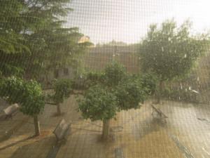 Meseta-rain