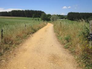 Onward-walk-from-Portomarin