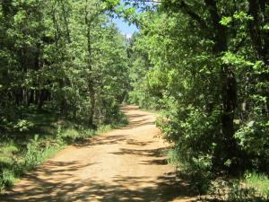 Path-from-San-Juan-de-Ortega