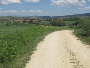 Path-to-Villafranca-1
