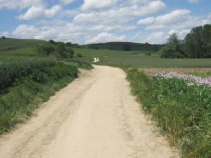 Path-to-Villafranca-2