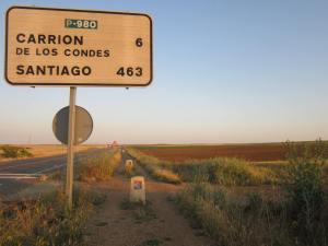 Road-to-Carrion-de-los-Condes