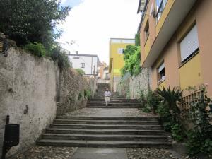 Sarria-steps