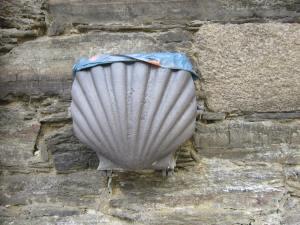 Scallop-shell-bin