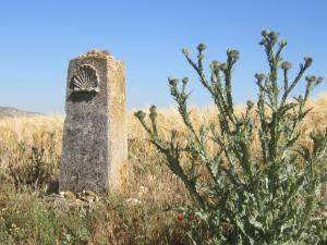 The-Meseta-Camino-Sign