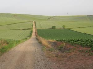 Walk-from-Najera-morning-2