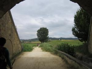Walk-from-Puente-la-Reina-to-Estella-3