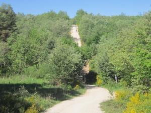 Walk-out-of-Villafranca-1