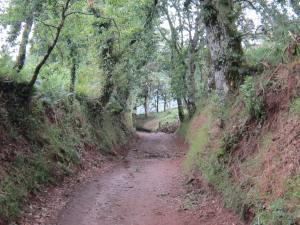 Walk-to-Melide-2