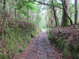 Walk-to-Olveiroa-1