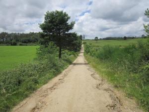 Walk-to-Olveiroa-2