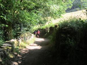 Walk-to-Portomarin