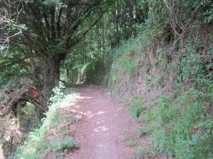 Walk-to-Samos-1