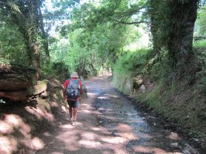 Walk-to-Triacastela