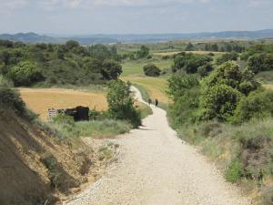Way-from-Pamplona-5