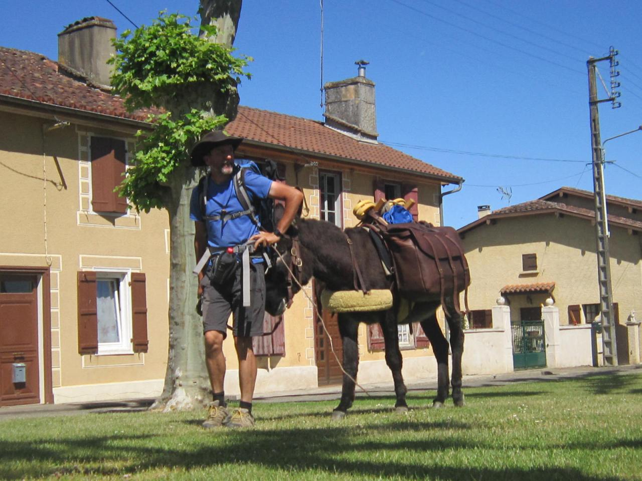 Pilgrim and donkey on Le Puy Way