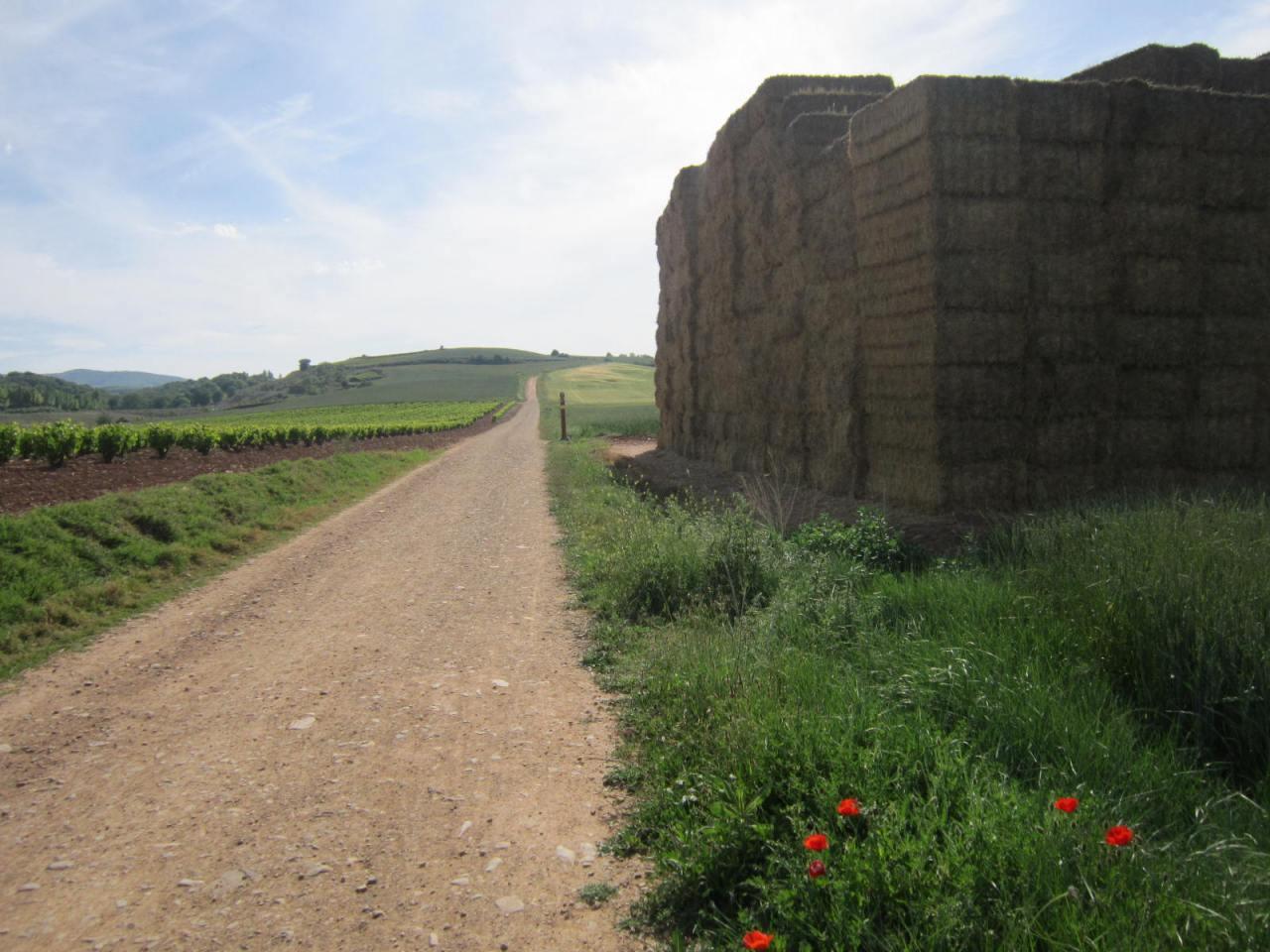 Hay bales on the Camino de Santiago