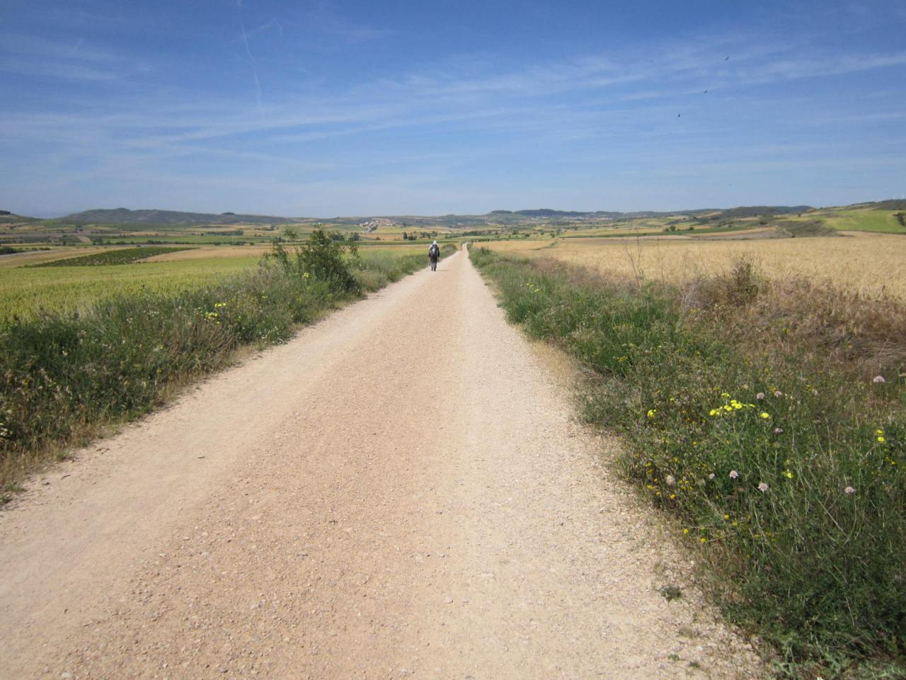 The path to Torres del Rio on the Camino Frances/FrenchWay