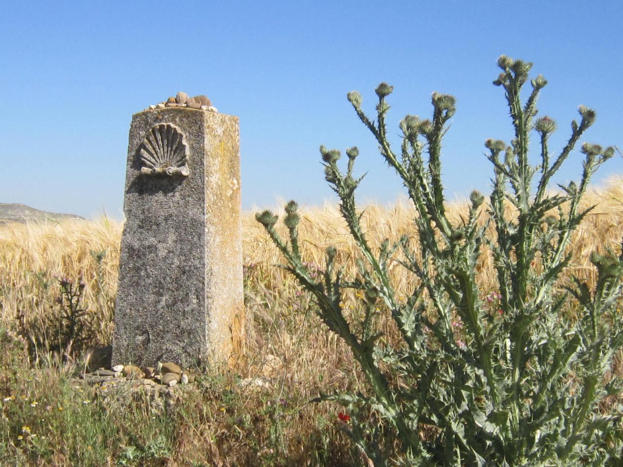 Camino sign on the Meseta