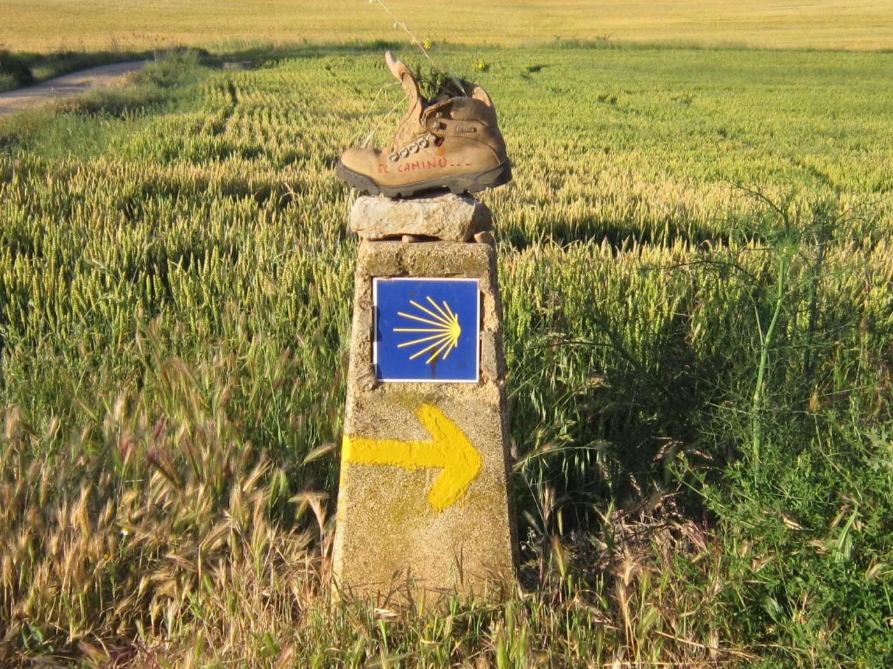 Camino santiago boots