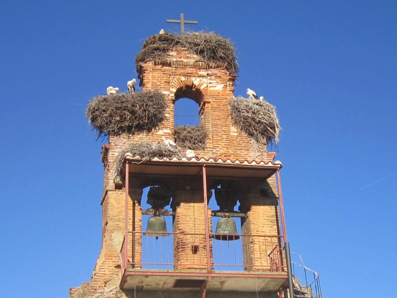 Church stork nesting between Leon and Hospital de Orbigo (on the Camino Frances/FrenchWay)